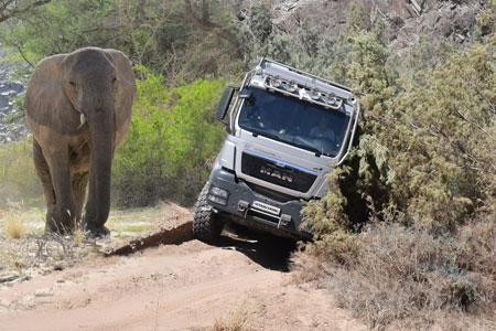 Close encounter with Namibias desert elephants